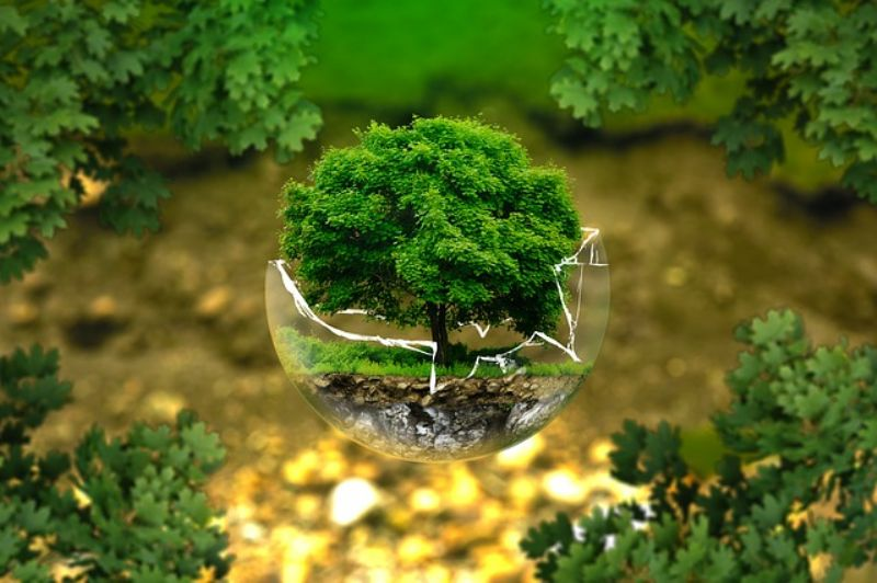 environmental-protection-326923_640_800x532