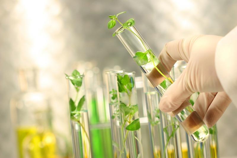 Il laboratorio per le analisi chimiche e microbiologiche: Importanza ed evoluzione